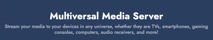 Multiversal Media Server